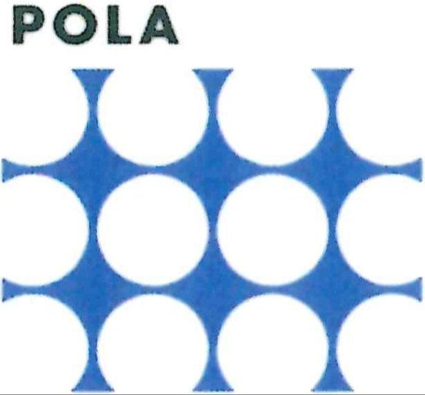 POLA エステインTierra